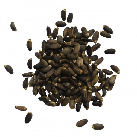 Расторопша семя 100 грамм