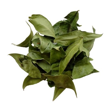 Мирт лист 10 грамм