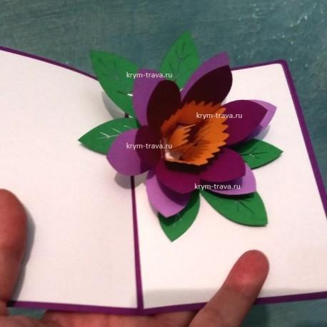 Фиолетовый цветок объёмная открытка 3d cards киригами раскладная