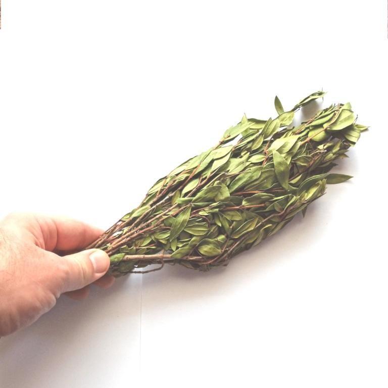 пучок веток с сухими листьями мирта  купить на Крым-трава he