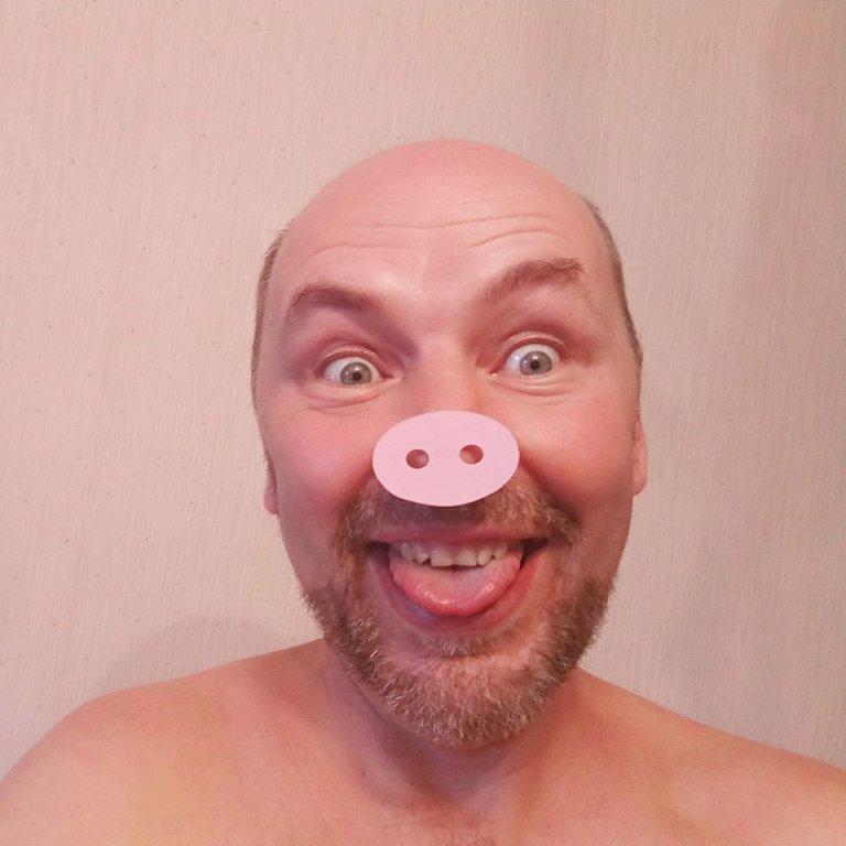 отходы производства открыток 2019 год свиньи
